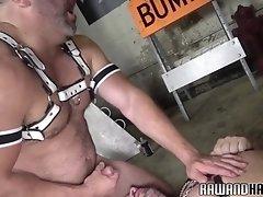 Leather bear sucks thick cock before bareback