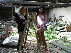 lovely lesbian ladders
